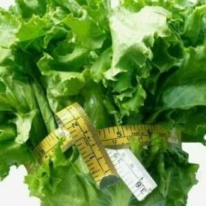 Healthy • Vega • Vegan